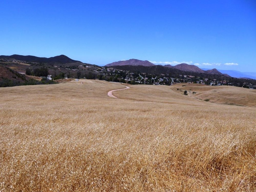 Rancho Sierra Vista, behind the Satwiwa Native American Culture Center.