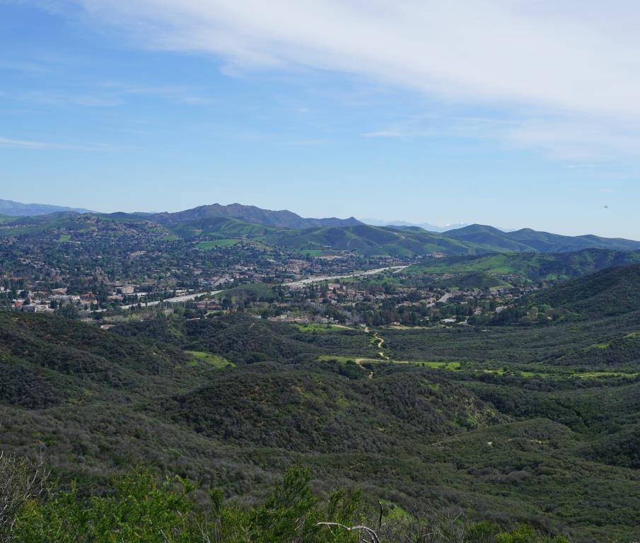 Fueled by months of steady rain, it is looking green here in the Los Robles Trail System.