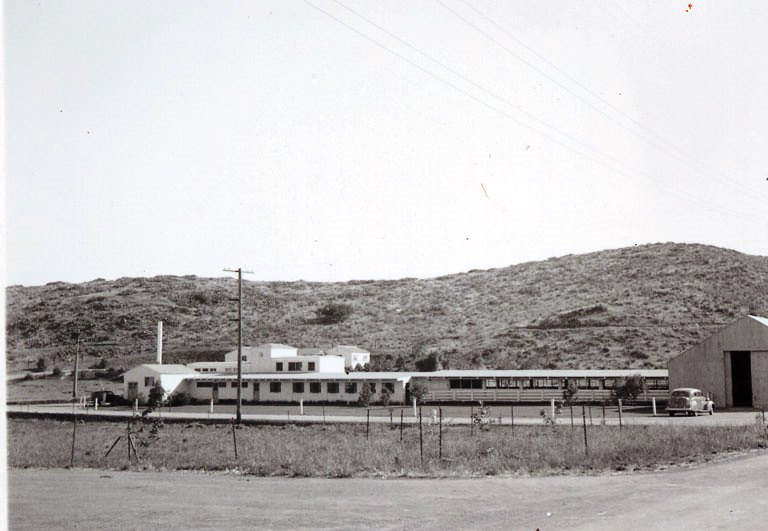 The dairy at Camarillo State Hospital in the mid-1950s. (CSUCI John Spoor Broome Library historic photo collection)