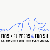 finsflippers.png