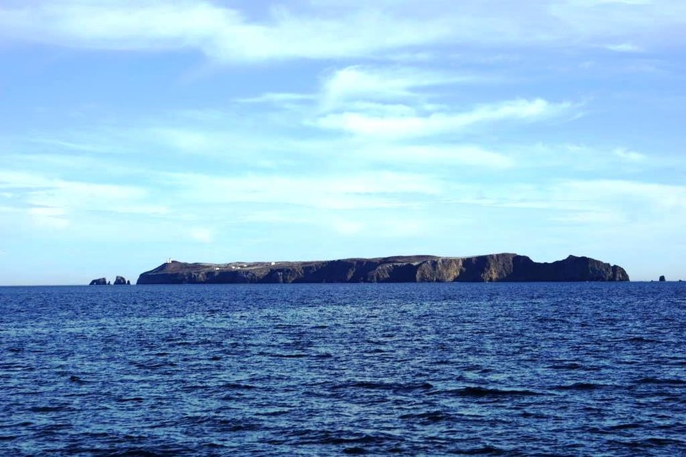 Anacapa Island seen from a whale watching boat.
