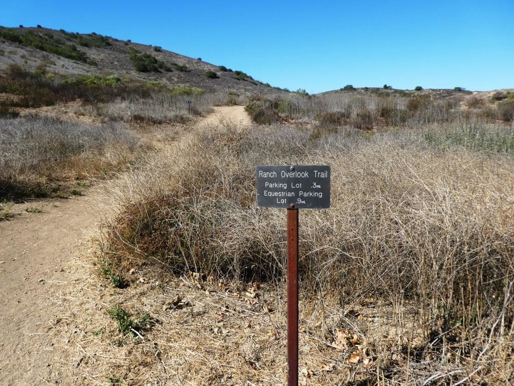 Trailhead to the Ranch Overlook Trail starts at the juncture of Sycamore Canyon Fire Road (paved road that runs through Point Mugu State Park) and the access bridge to the Satwiwa Native American Culture Center.