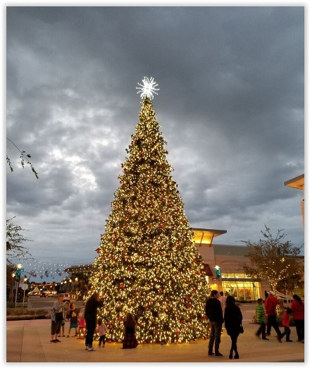 Camarillo Christmas Tree Lighting 2020 Annual Tree Lighting Celebration at The Collection at RiverPark on