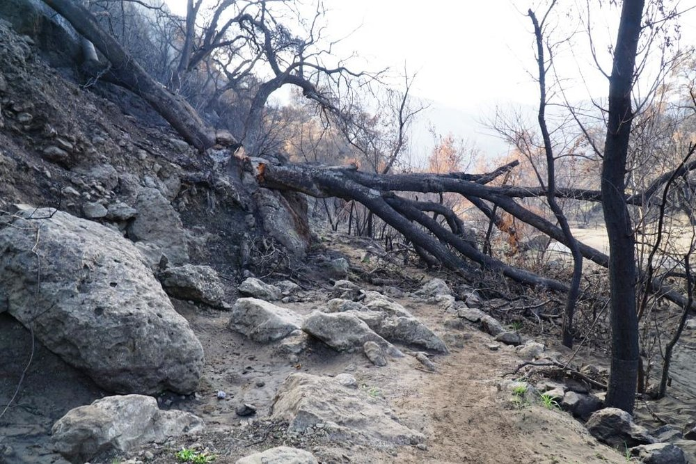 As you can see, getting to the MASH site has some challenges resulting from the Woolsey Fire and subsequent rainstorms. Best to wear very solid hiking shoes and stay on the path as best you can.