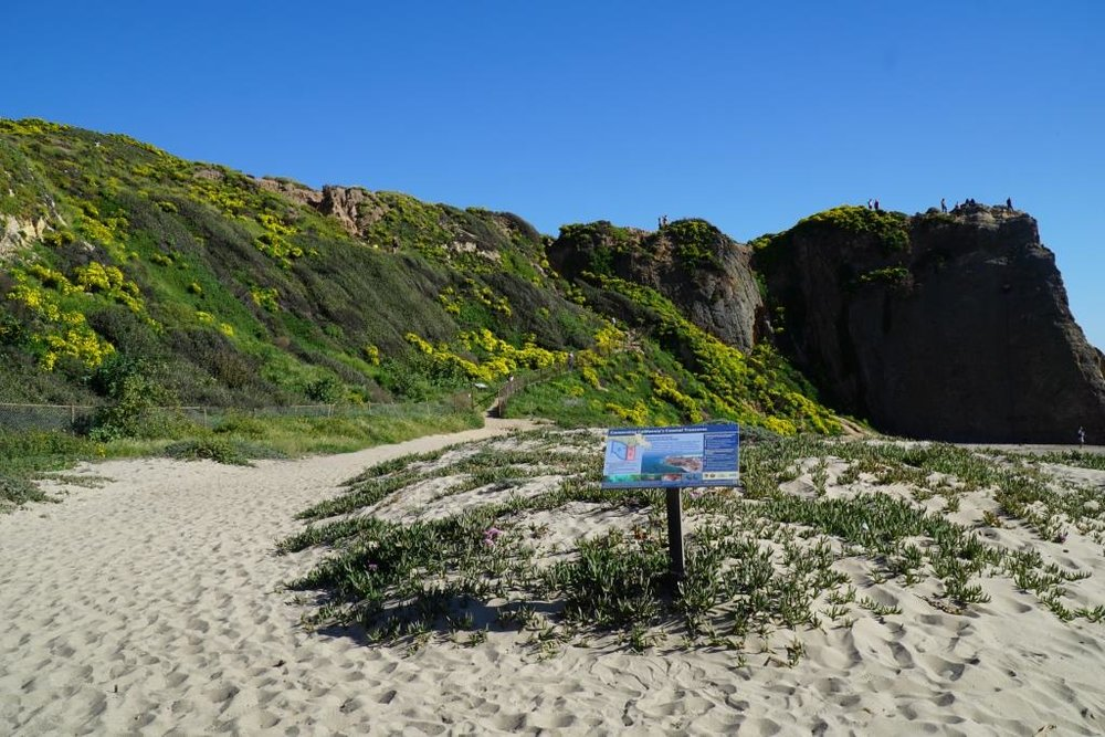 The trailhead at the end of the parking lot at Point Dume State Beach