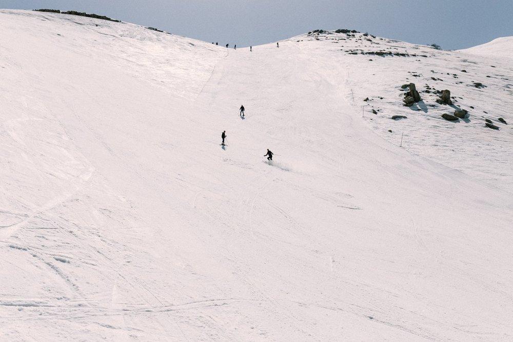 גלישת סקי בחרמון.jpg