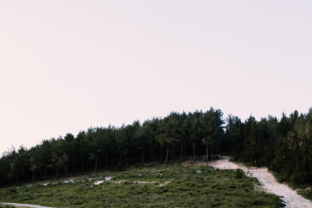 צילומי זוגיות בצפון-יקונעם (19 of 20).jpg