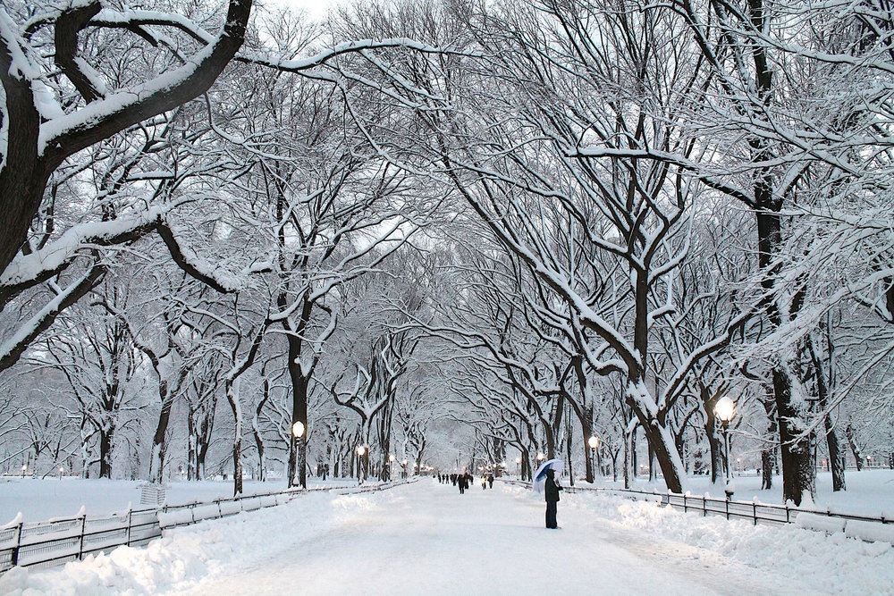 This Year  2018  at Sunset on the Winter Solstice December 21st,   KALIMBASCOPE   rolls New York City's enchanted  Central Park . From Columbus Circle thru Archways, down the Promenade of the majestic Mall and into the resonant chambers of the Bethesda Terrace.