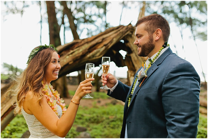 big island wedding photographer | hawaii elopement | pololu valley
