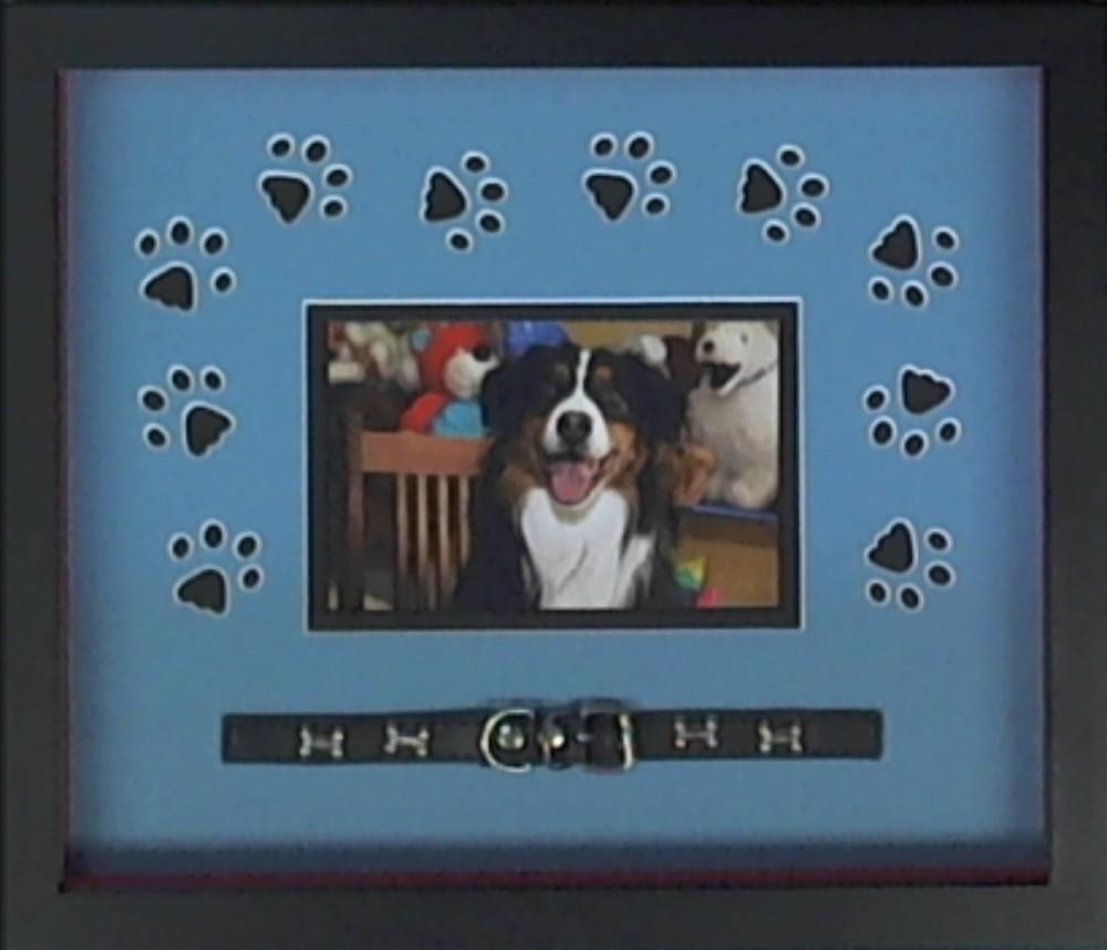 framed pet photo ideas