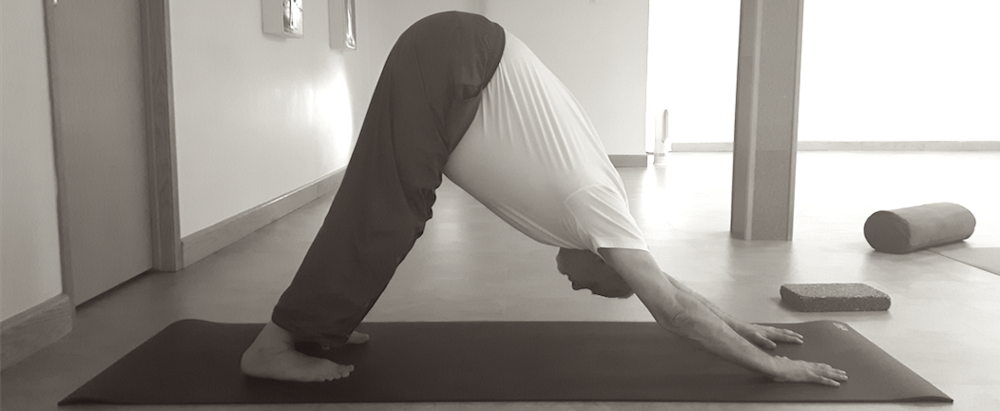 Steve in Downward Facing Dog ( Ado Mukha Savasana) at Taiga