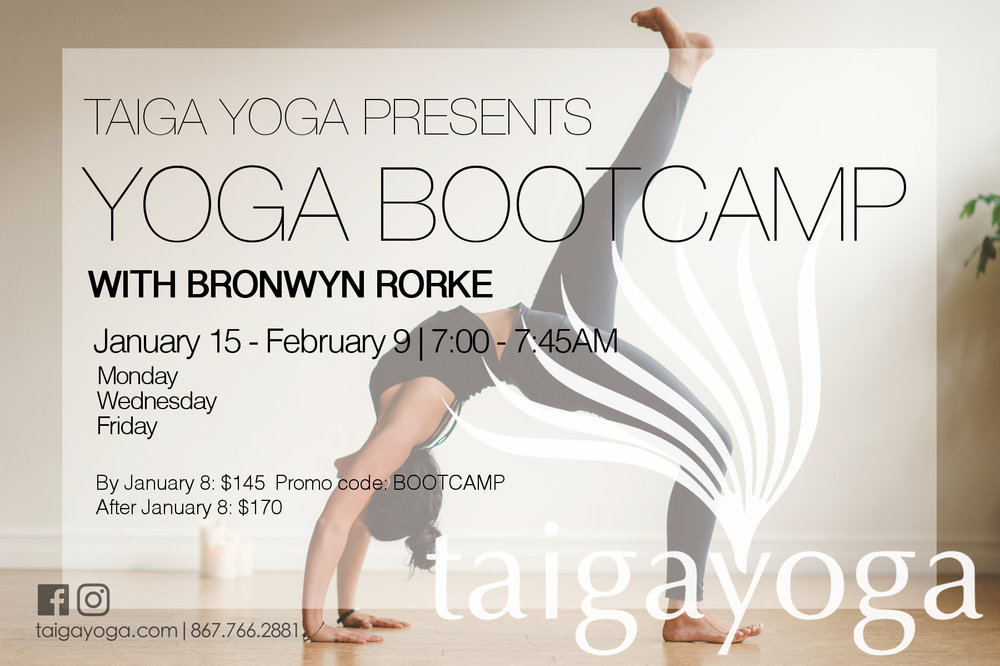 Face the new year with Bronwyn Rorke in this 4 week morning series that will get your body, mind and spirit back into shape. Make 2018 a year of growth! Prepare to sweat, laugh and be inspired in Bronwyn's powerful flow-style power classes.