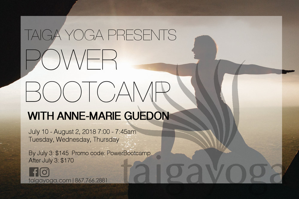 Anne Marie Power Bootcamp xcf.jpg