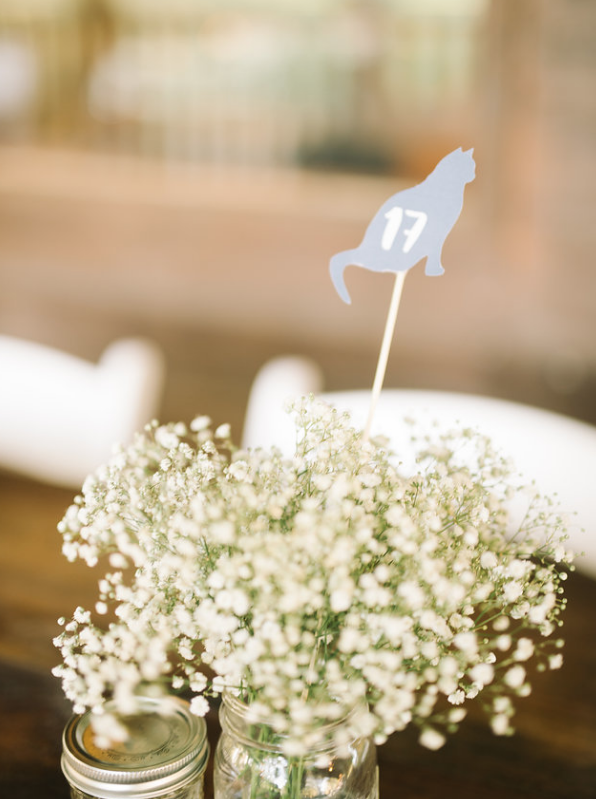 cat-lover-wedding-how-to-incorporate-cats-into-your-wedding-ivory-and-beau-savannah-wedding-planner-savannah-event-designer-savannah-wedding-florist-cat-table-numbers-diy-wedding-rustic-wedding-pineola-farms.png