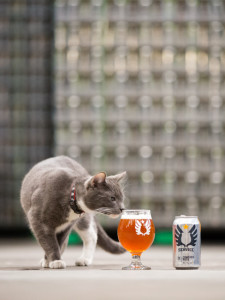 service-brewing-co-shop-local-savannah-wedding-planner-savannah-events-brew-cat-brewery-savannah-georgia.jpg