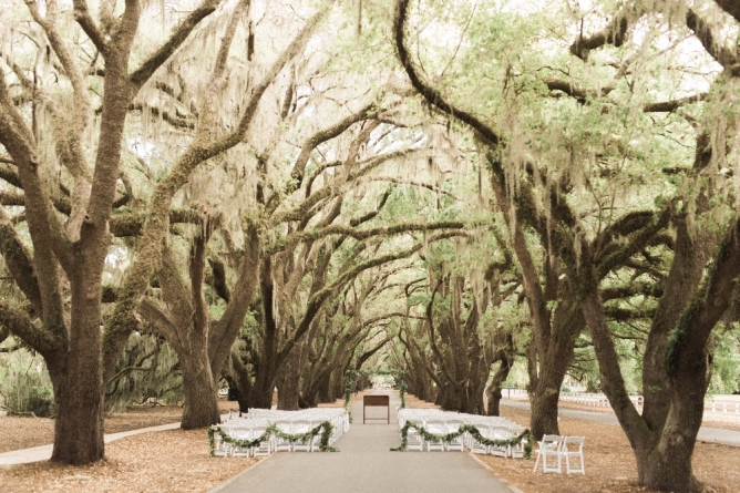 belfair-plantation-wedding-planner-ivory-and-beau-savannah-wedding-planner-southern-weddings-inspiration-wedding-southern-wedding-planner-southern-event-designer-savannah-florist-savannah-wedding-florist-plantation-southern-wedding.jpg