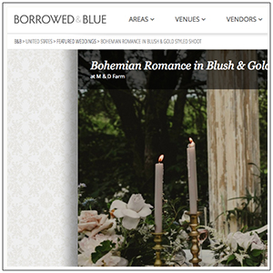 Borrowed & Blue Blog