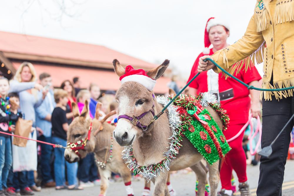 LF Christmas parade-10.jpg