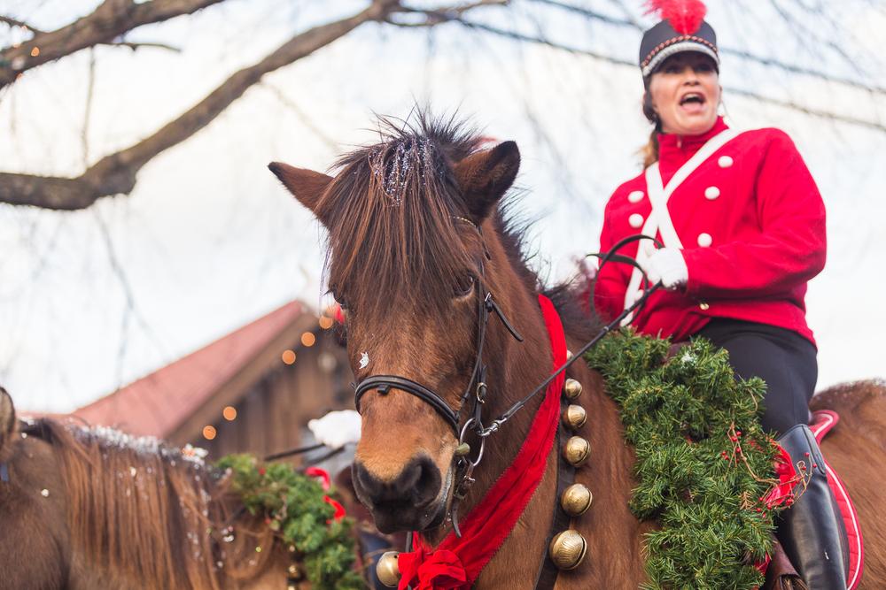 LF Christmas parade-20.jpg
