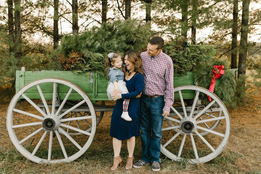 Nashville-Christmas-mini-session-family-photographer_0004.jpg