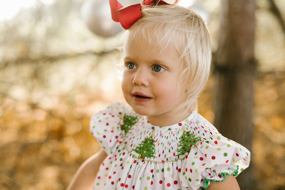Nashville-Christmas-mini-session-family-photographer_0008.jpg