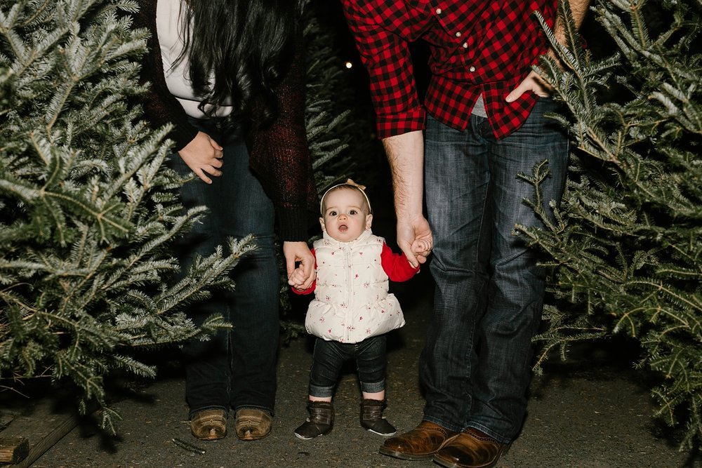 Nashville-Christmas-mini-session-family-photographer_0021.jpg