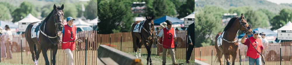 Brentwood-Tennessee-Iroquois-Steeplechase-2017_0031.jpg