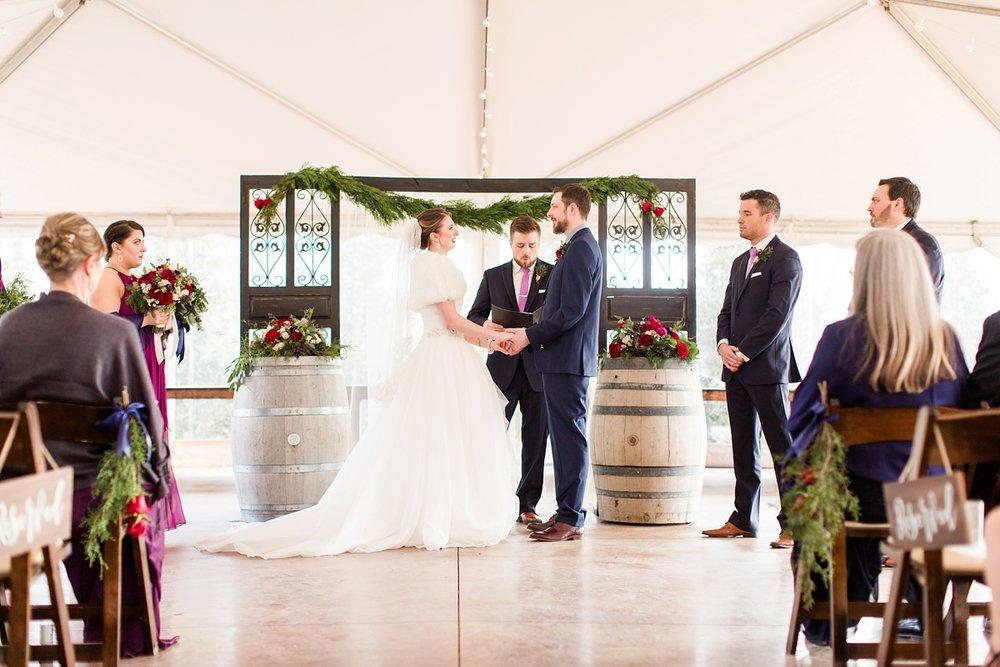 Arrington-Tennessee-Winter-Vineyard-Wedding_0061.jpg