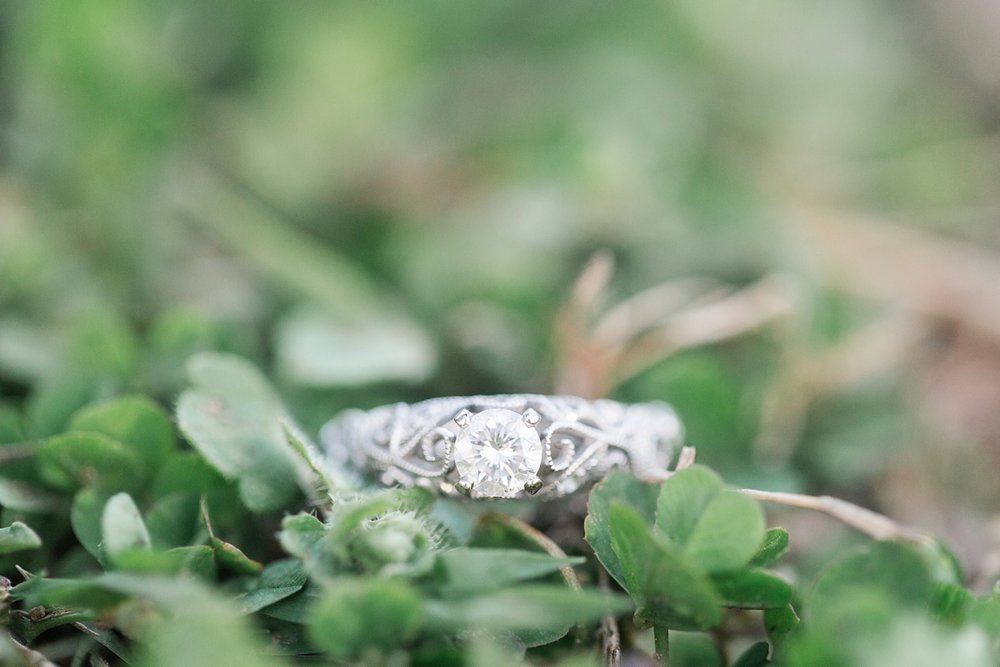 Nashville-Tennessee-Spring-Belmont-Engagement_0033.jpg