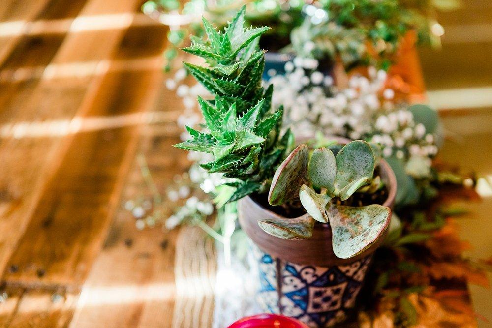 Dickson, Tennessee Cactus Creek Barn Autumn Wedding_0126.jpg