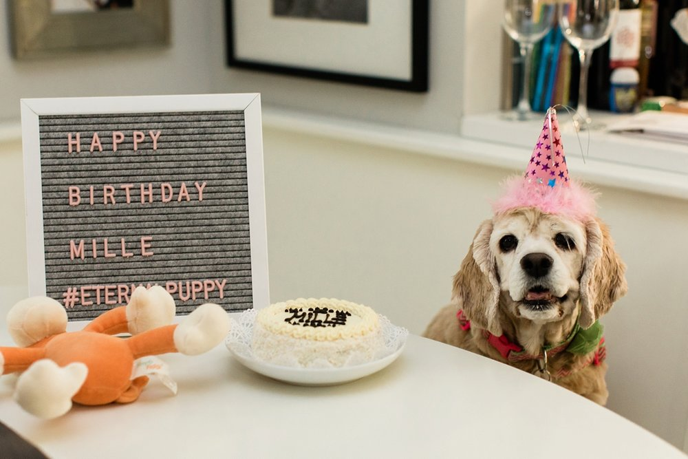 Celebrating Mille's Birthday_0002.jpg
