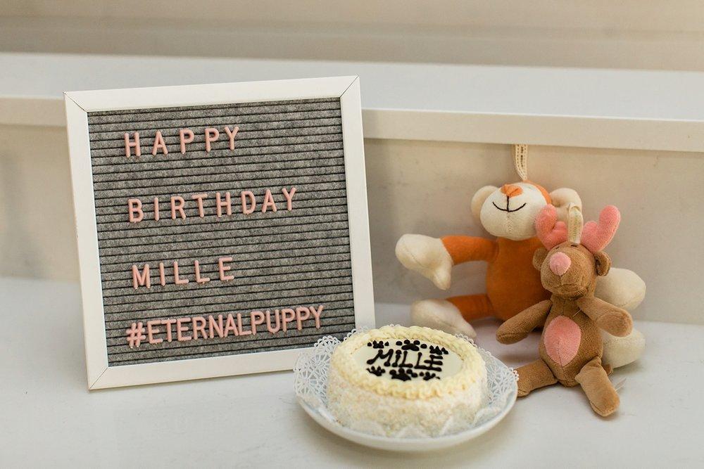 Celebrating Mille's Birthday_0001.jpg