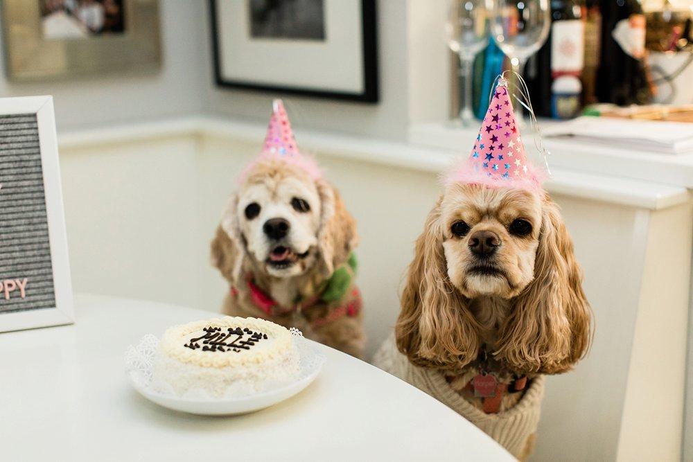 Celebrating Mille's Birthday_0004.jpg