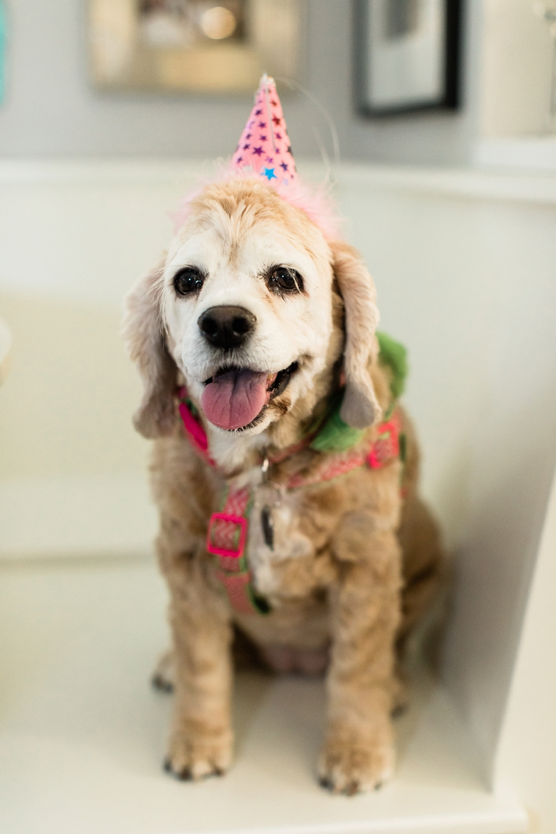 Celebrating Mille's Birthday_0006.jpg
