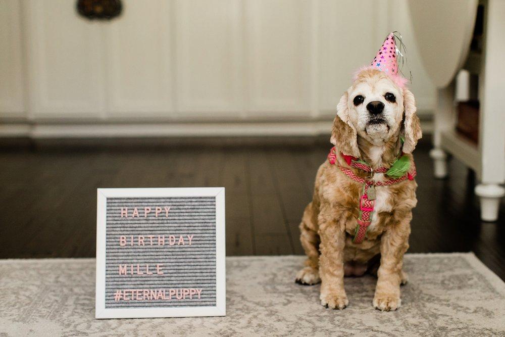Celebrating Mille's Birthday_0009.jpg