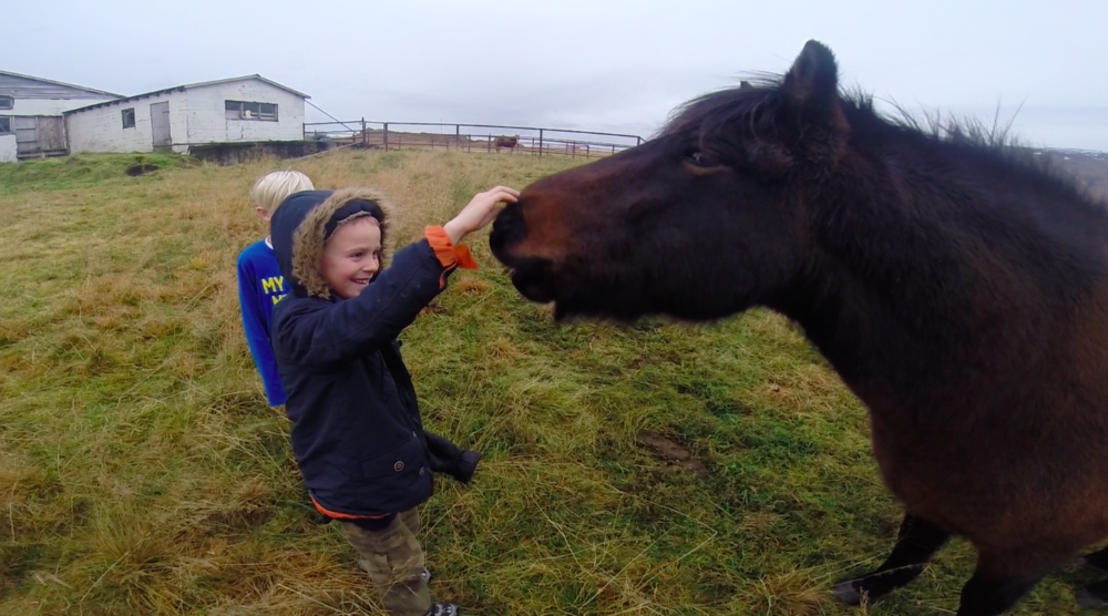 A natural inclination towards horses?