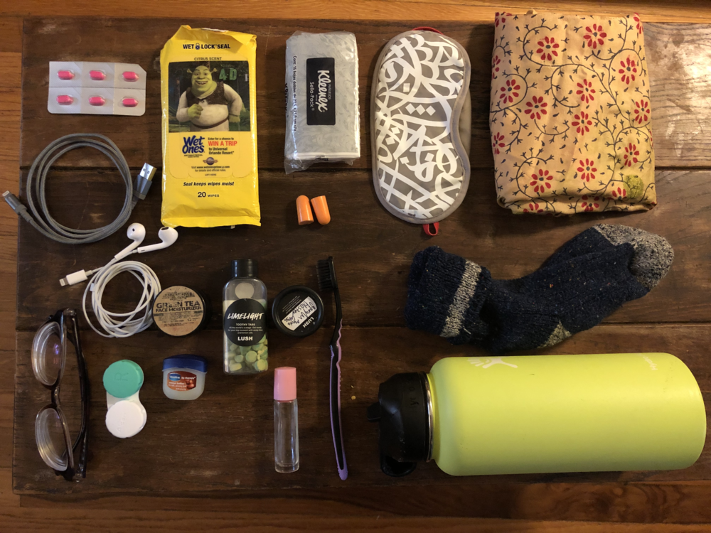 """Entirety of what goes into my """"plane pouch"""" so that everything is easily accessible and I don't have to go digging around in my carryon."""