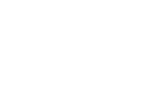 zillow300.png