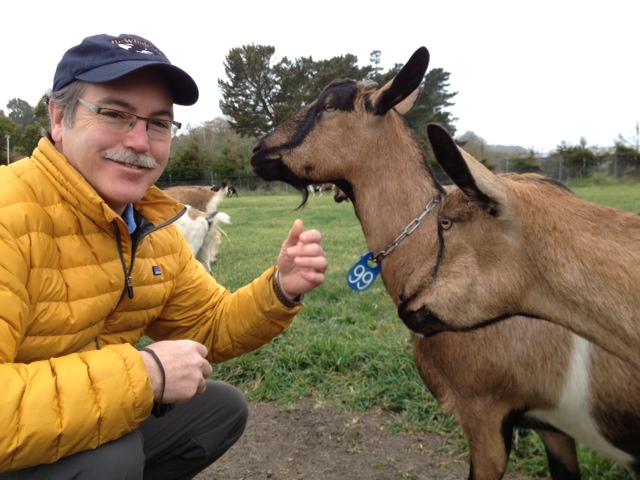 Richard and Goats