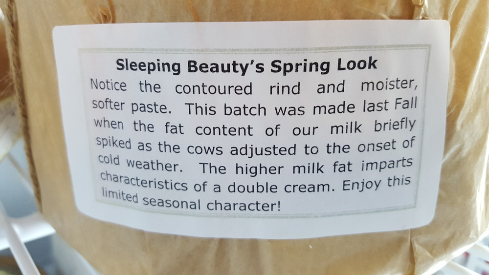 Sleeping Beauty Description