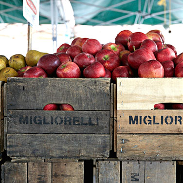 our-food-apples-d0e617d5d6b6030c749c56429ddba80d.jpg