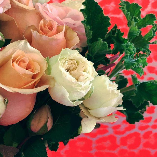 💘#flowers #flowerpower #flowerstagram #blonde#buds#theblondebuds