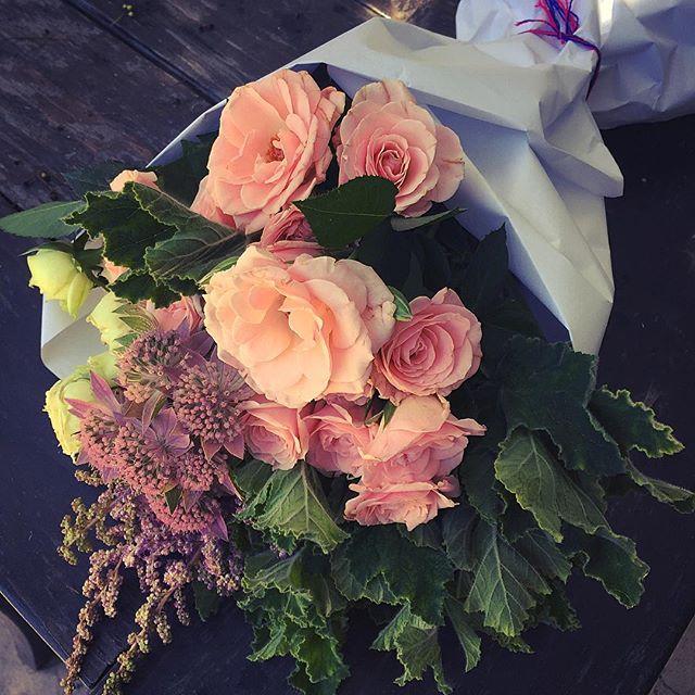 #flowers #floweroftheday #flowerpower #flowersofinstagram #losangeles #buds #blonde #theblondebuds #flowers