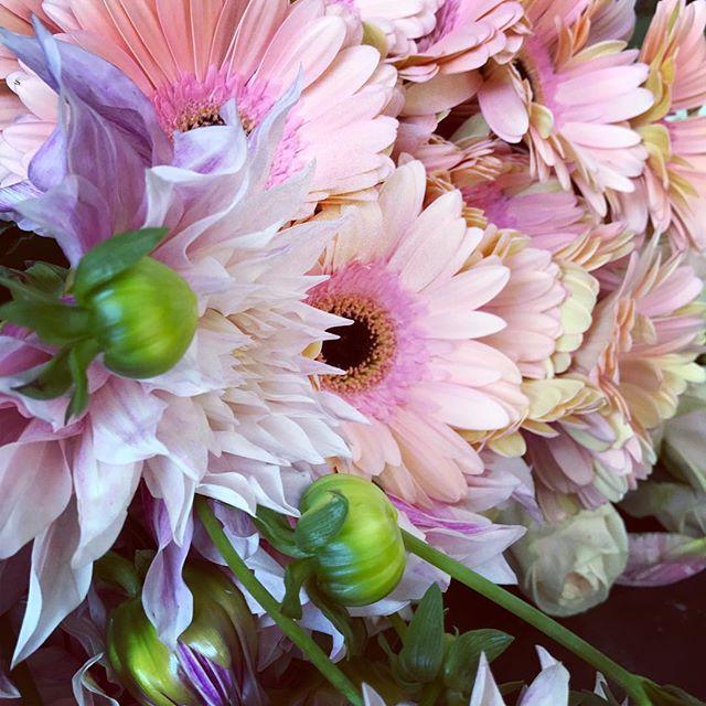 💅🏻#blondebuds #flowers #flowerpower #blonde #losangeles
