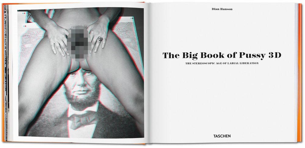 big_book_of_pussy_in_3_d_va_int_pixel_open_0002_0003_04615_1501211449_id_799959.jpg