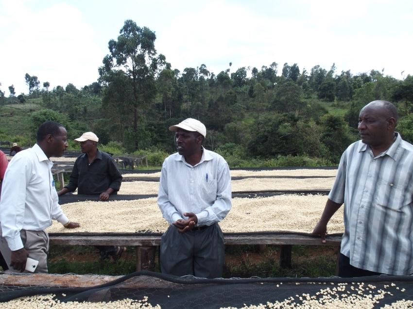 2016年12月に訪れたKamuwangi Factoryでのドライングの様子。