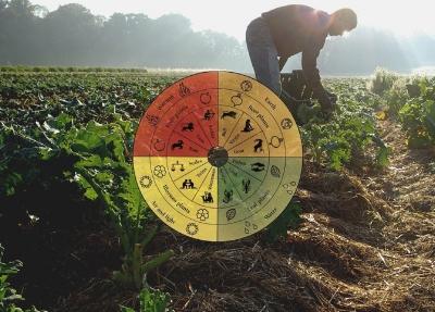 biodynamic farming.jpg