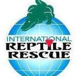 reptileres.jpg