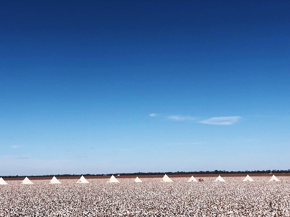 Nyngan Cotton Farm, NSW