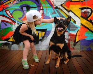 graffiti_dog_pet_four_paws_portrait794050_o.jpg